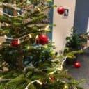 Kontorets öppettider under Jul & Nyår